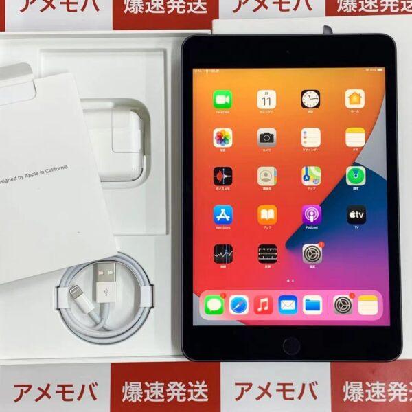 iPad mini 5 Apple版SIMフリー 256GB MUXC2J/A A2124 極美品-正面
