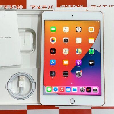 iPad mini 5 Apple版SIMフリー 256GB MUXE2J/A A2124