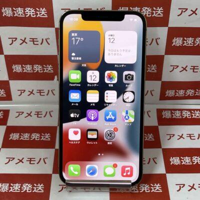 iPhone12 Pro Apple版SIMフリー 128GB MGM73J/A A2406 極美品
